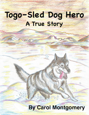 Togo-Sled Dog Hero TH